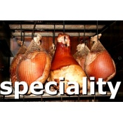 category_speciality